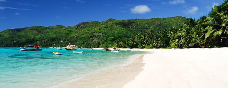 Seychelles Attitude