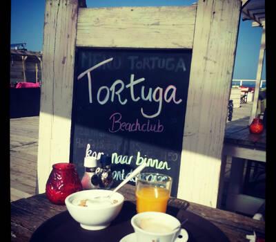 Beachclub Tortuga