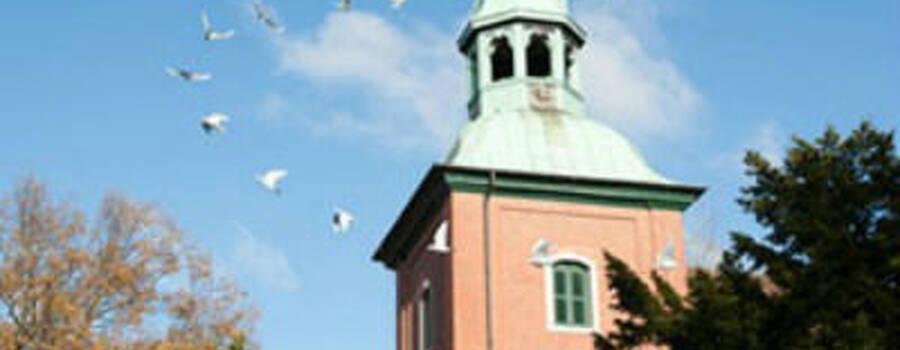 Beispiel: Hochzeitstauben,Foto: Zwei weisse Tauben.