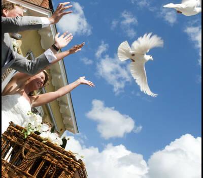 Witte Vleugels van Vreugde en Verdriet- Copyright ©