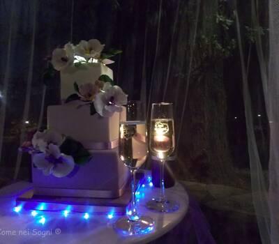 Tutto è pronto per il taglio della torta... ora chiamo gli sposi e i loro ospiti... Un altro sogno è diventato realtà.