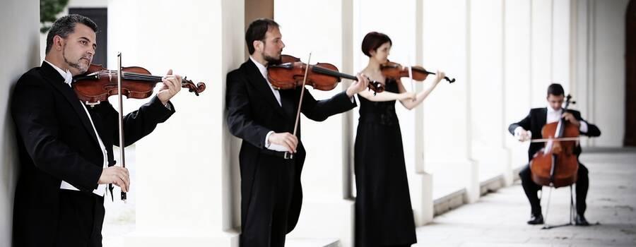 Quartetto d'archi matrimonio. Violino viola violoncello