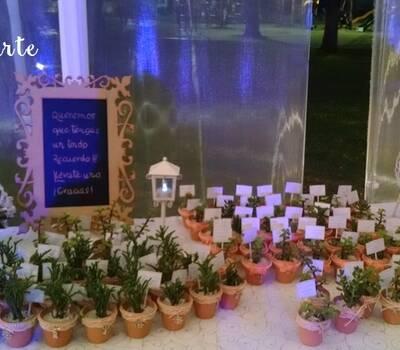 Mesa de recuerdos con plantas suculentas, decoradas en marfil y coral. Decoración mesa de los recuerdos. Recuerdo de boda, shower.