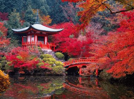 Un séjour au Japon