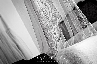 Las mejores fotos del velo de la novia