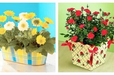 Wymień cięte kwiaty ślubne na ... kwiaty doniczkowe!