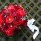 Diferentes ideias de buquês de noiva com flores vermelhas. Foto: Adriana Carolina
