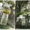 Hochzeitsdeko mit Gläsern und Vasen. Foto: Jesi Haack