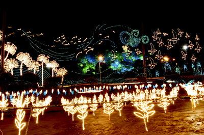 ¡Llegaron las luces de Navidad!