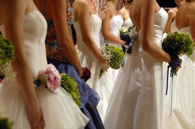 Amore, green life, sessualità e tecnologia: tutto questo e molto altro è Sposidea 2015