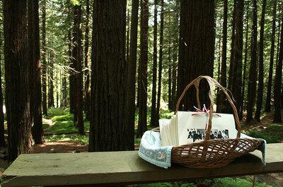 Ideas para organizar una boda en un bosque o estancia de campo