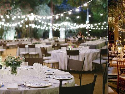 Come decorare il tuo matrimonio con microluci: una magica e raffinata atmosfera