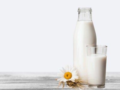5 razones para no consumir lácteos: Conviértete en una novia mega saludable
