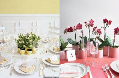 Decora il tuo ricevimento con piante in vaso, per un matrimonio 100% eco-friendly!
