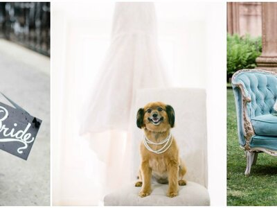 Pets in Weddings: Images That Will Melt Your Heart