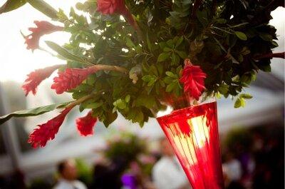Haz tu sueño realidad y celebra una boda ecológica