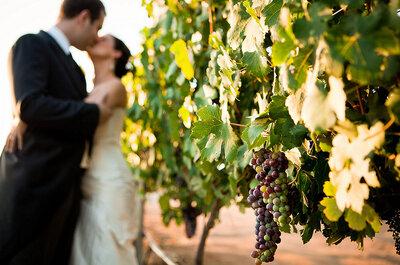 Originales sugerencias para una boda en un viñedo