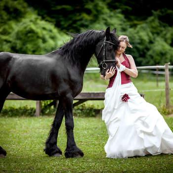 Hochzeitsfotografen in Deutschland und ihre tierischsten Momente!