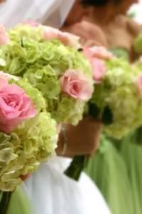 Ekologiczne wesele