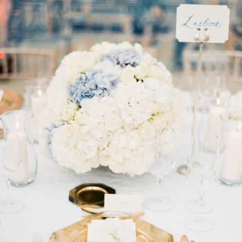 Hortênsia: flor da moda nos casamentos de 2016!