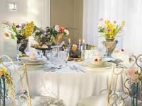 De beste weddingplanners uit Noord-Holland! Laat jullie bruiloft perfect verlopen