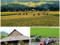 Connaissez-vous Asiatica Travel ? Découvrez comment voyager autrement !