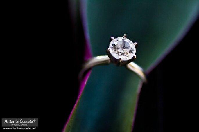 Immagine che risalta il dettaglio dell'anello di fidanzamento in contrasto con uno sfondo scuro - Foto Antonio Saucedo