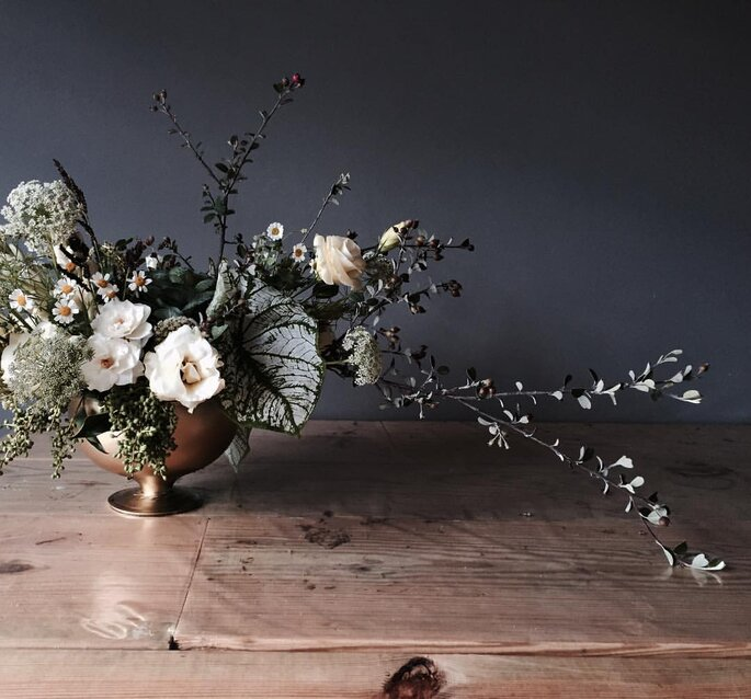 Foto: Allium by Olympia
