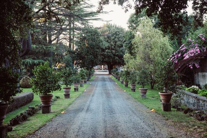 Rosenvoile   Location: Villa Grazioli Grottaferrata