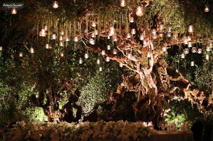Jardín Mayita