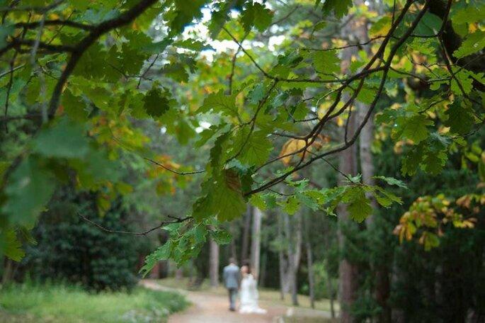 MC WeddingPhoto