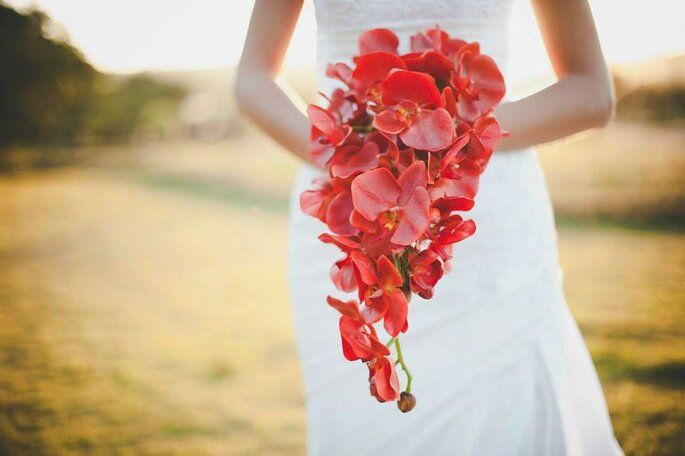 An Mark - Bouquets Finos - Foto Lopes Fotografias