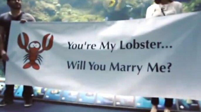 Propon matrimonio debajo del agua - Foto The Heart Bandits YouTube