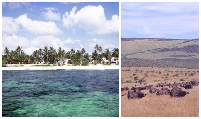 Imágenes de Kenia. Fotos: magicalkenya.com