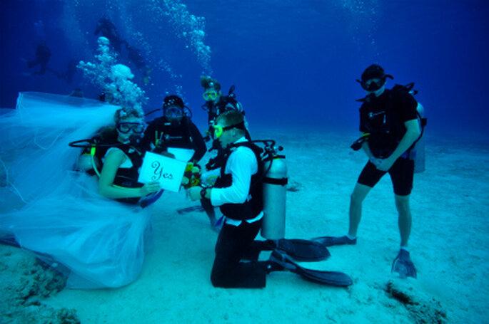 Di sí quiero debajo del agua - Fotografía: www.scubadiverlife.co