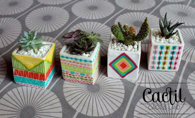 Cactil - Cactus Land