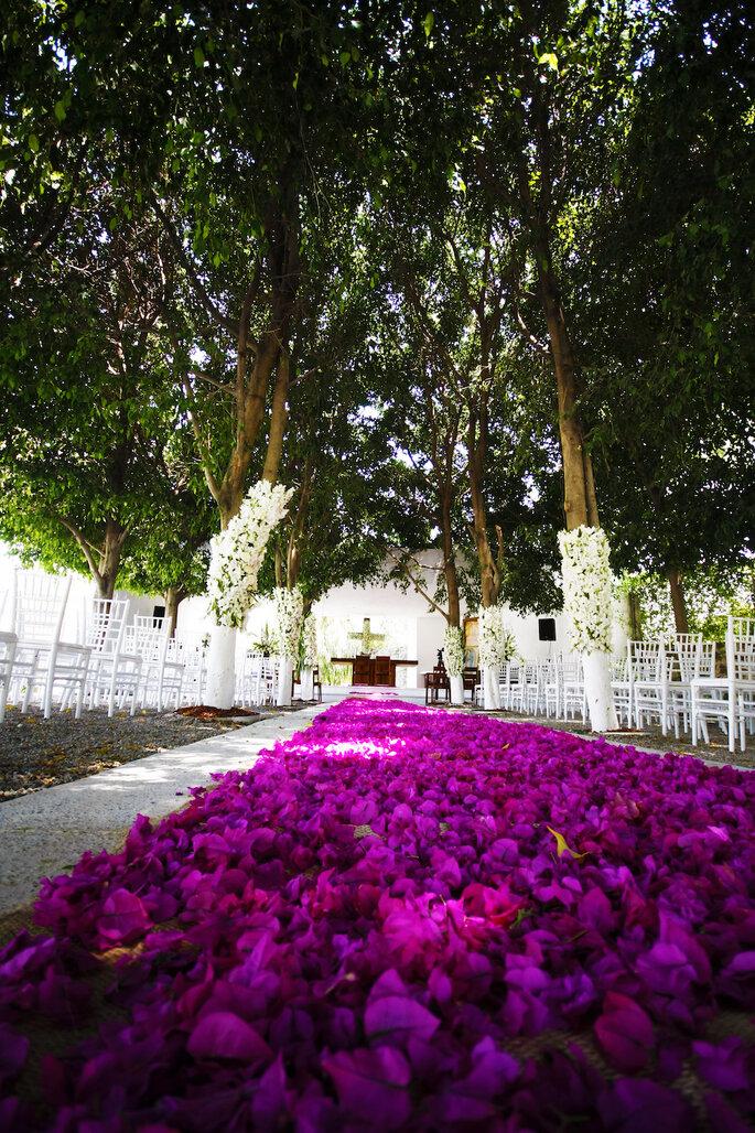 Foto: Jardín Beltempo