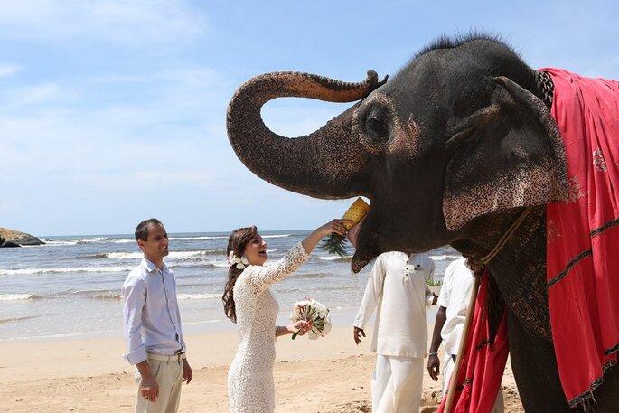 Ślub za Granicą - Romantic Travel