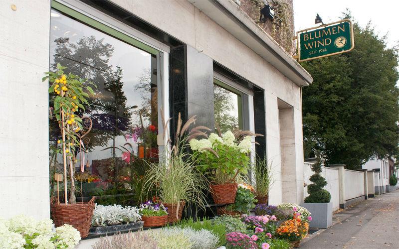 Beispiel: Das Geschäft, Foto: Blumen Wind.