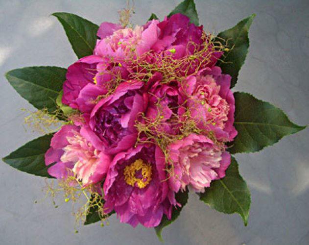 Beispiel: Brautsträuße, Foto: Blumen Leitgeb-Hitzler.