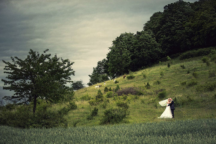 Wedding Foto: Photodesign Radloff.
