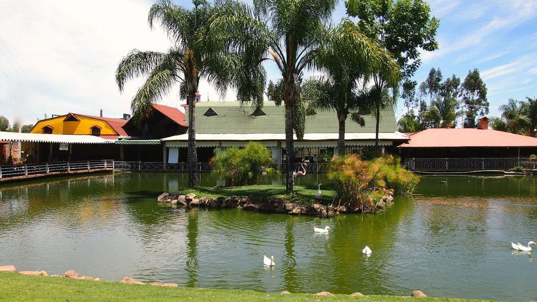 Lago del restaurante