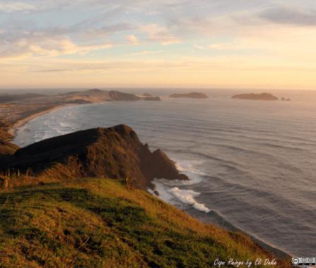 Nomade In World - NOUVELLE ZELANDE - Ile du Nord