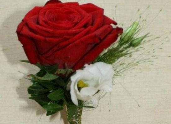 Beispiel: Reversanstecker, Foto: Blumenparadies Hahn.