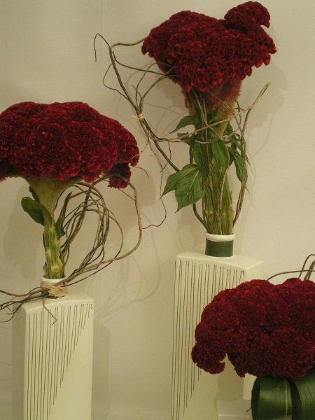 Efímeras flores