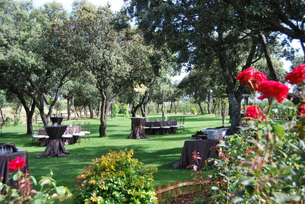 Jardin entre Encinas Centenarias