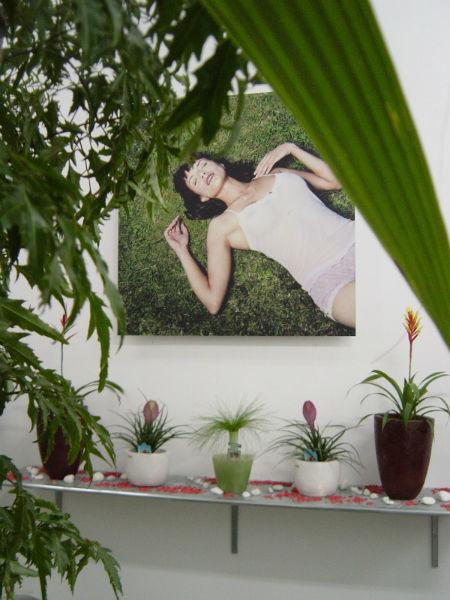 Herbs floristería