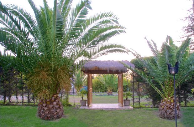Las Secoyas