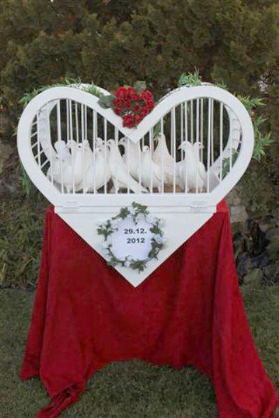 Beispiel: Das perfekte Überraschungsgeschenk, Foto: Hochzeitstauben.