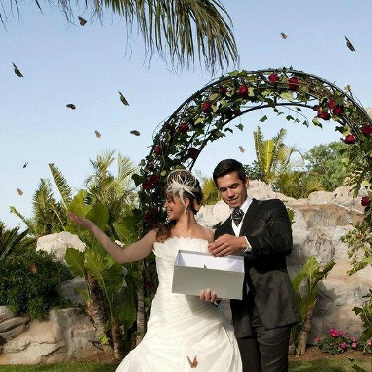 Island Weddings Mallorca.